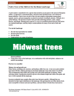 MidwestNativeTrees_thumb copy